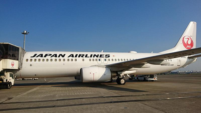 羽田空港で撮影した青森行JAL B737-800