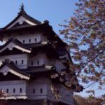 春の弘前城と桜(石垣修理前)