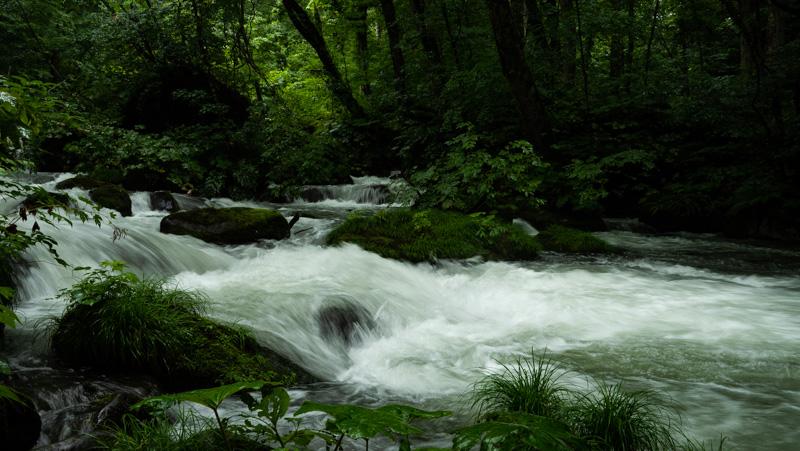 雨の日の奥入瀬渓流